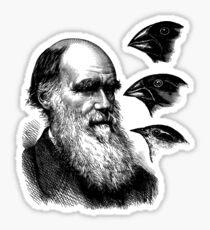 Charles Darwin Sticker