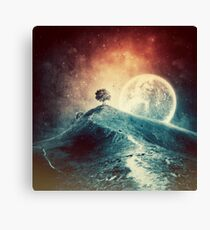 Under the colorful moonlight Canvas Print