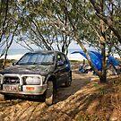 Rainbow Beach Camping by Tony Steinberg