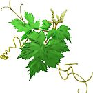 Vine Leaves and Tendrils on cream by elee