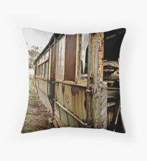 Conductors View (1) Throw Pillow
