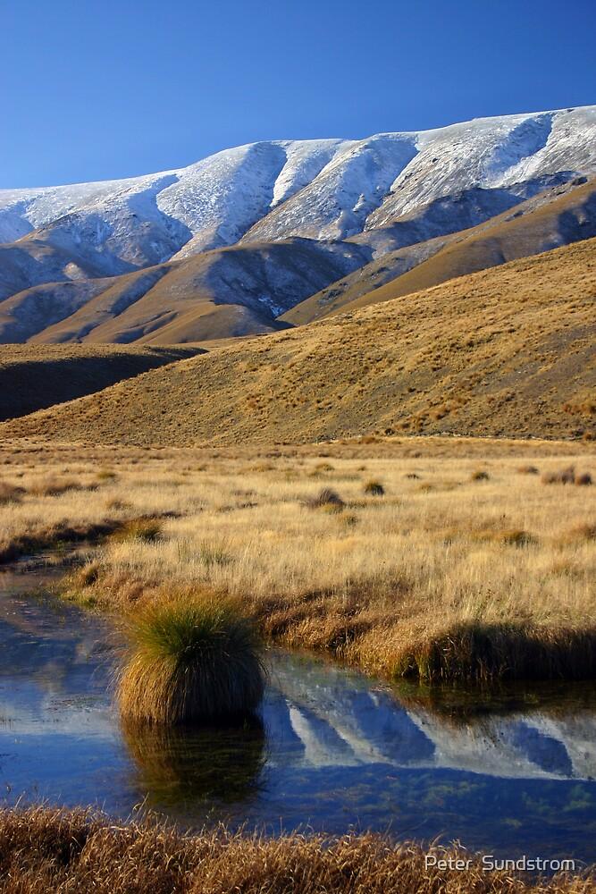 Hawkdun Ranges by Peter  Sundstrom