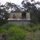 shed in the bush by Stacey Kellett
