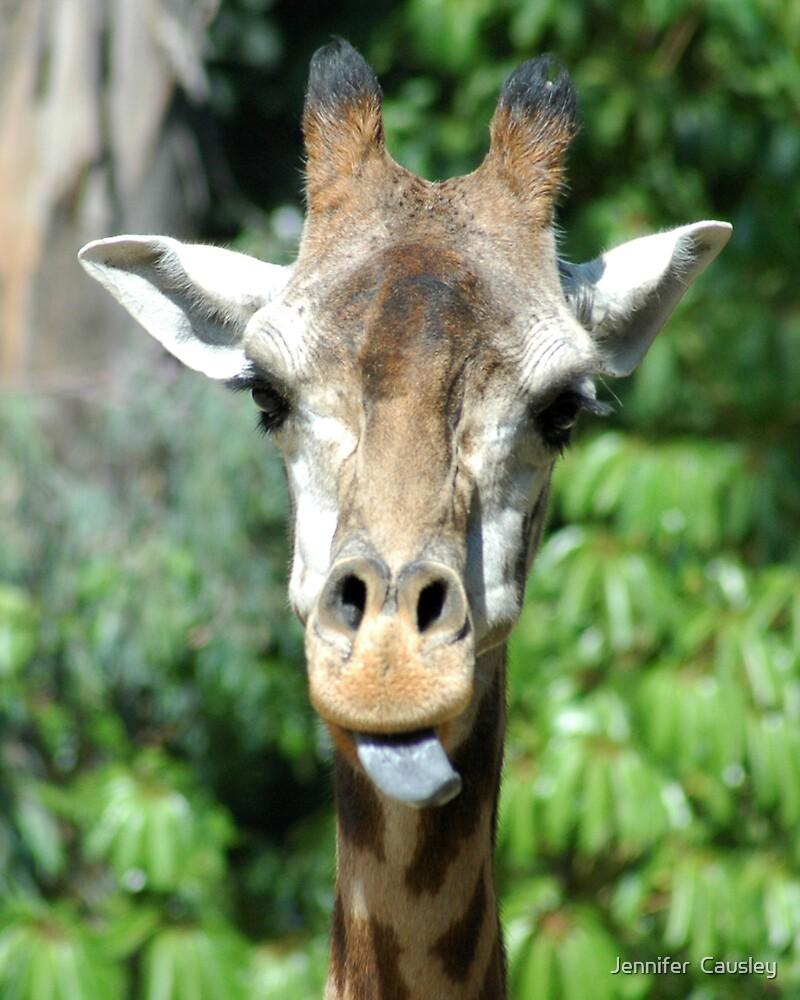 Giraffe Portrait by Jennifer  Causley