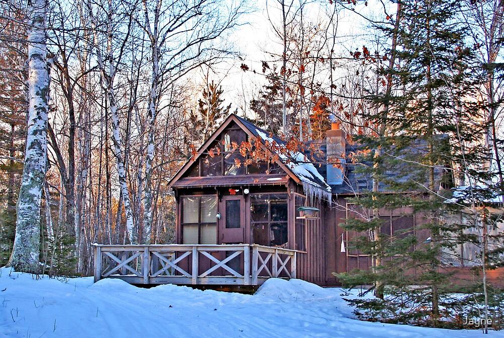 Little cabin in the woods by Jayne