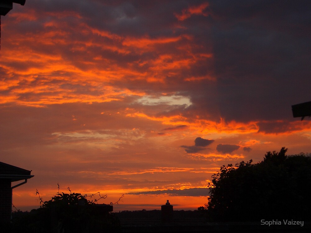 Firery Sky by Sophia Vaizey