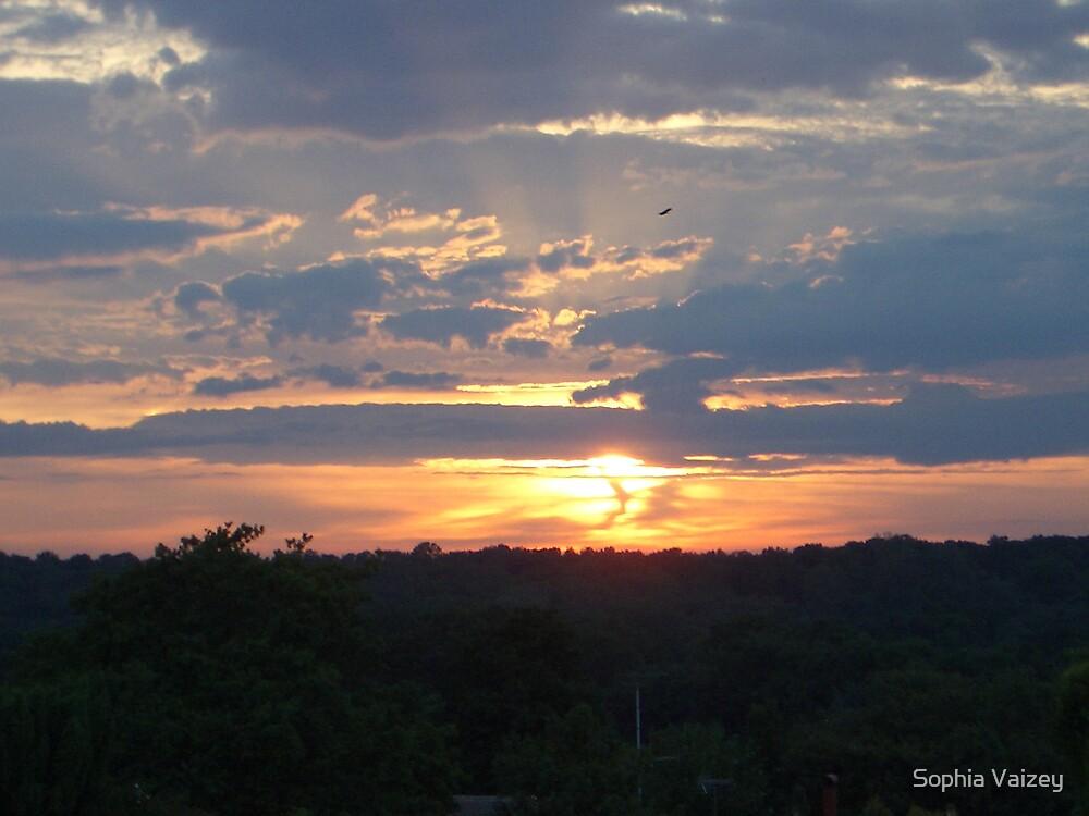 Beautiful Sunset by Sophia Vaizey