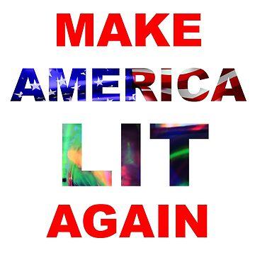 Make America Lit Again  by Binsworth