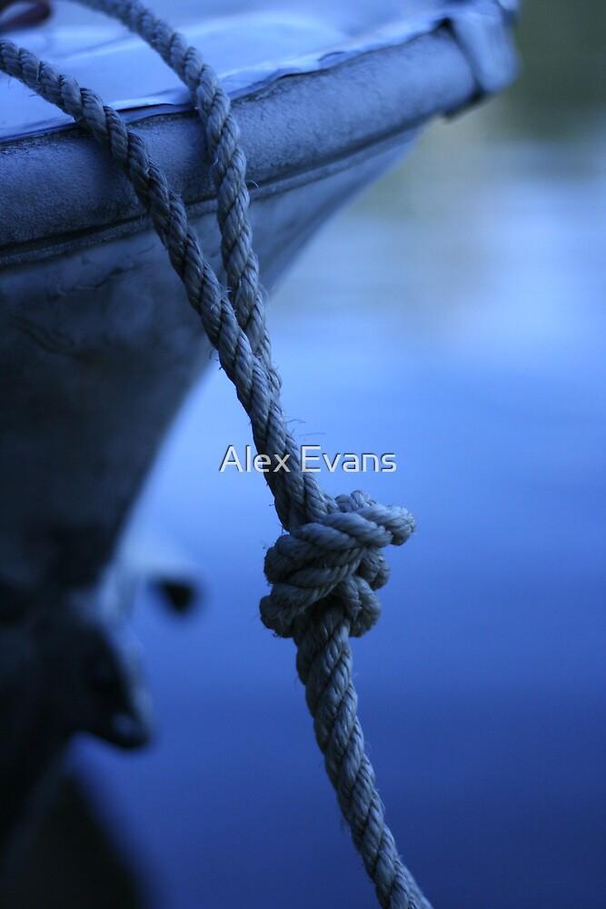 Blue Knot by Alex Evans