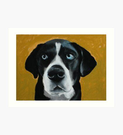 Seamus - a dog Art Print