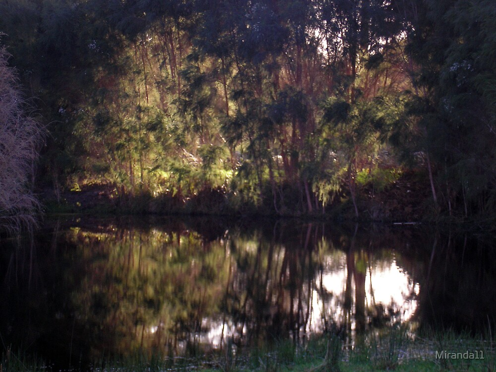 Reflection by Miranda11
