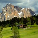 The Langkofel in the evening light by annalisa bianchetti