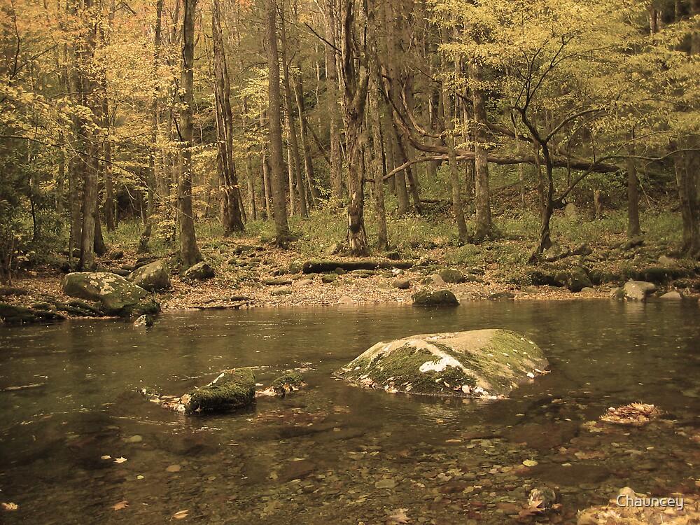 Golden Stream by Chauncey