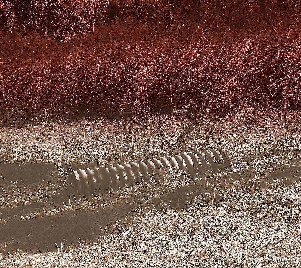 Red Grass by vjwriggs
