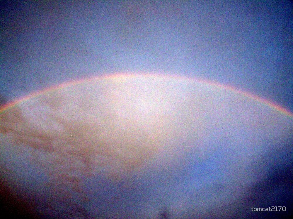 rainbow by tomcat2170