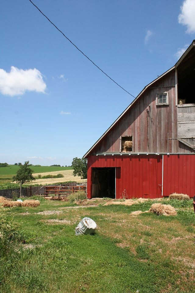 Sunny day on the farm by LMcHenry