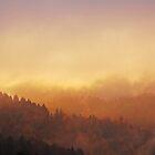 Sunset............ by Imi Koetz