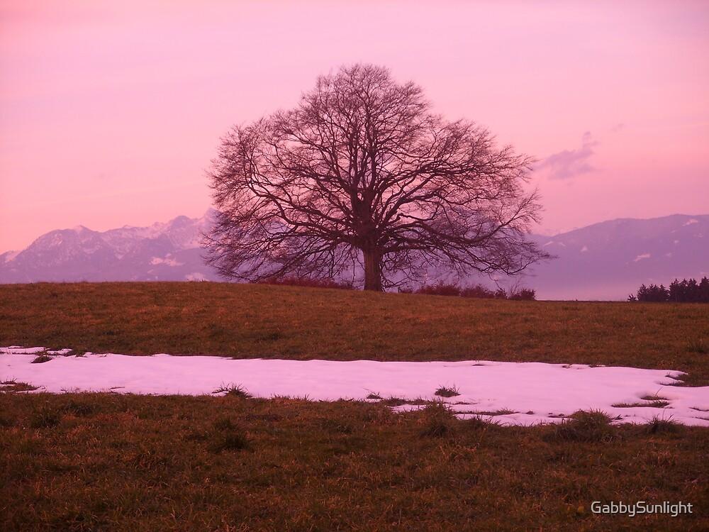 The old Oak by GabbySunlight