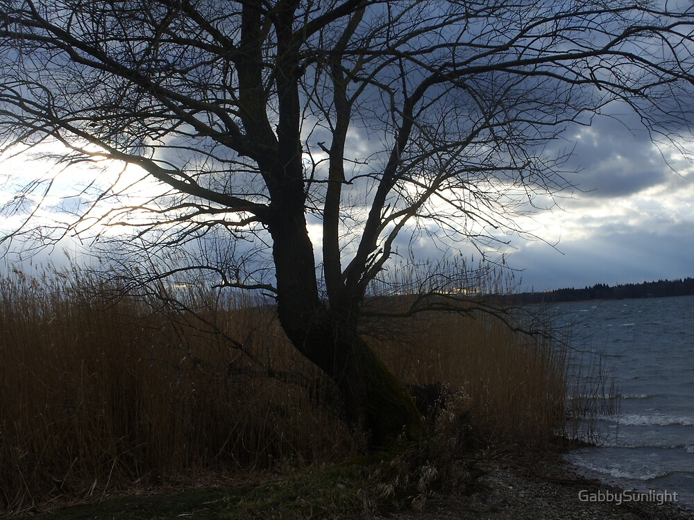Early Evening by GabbySunlight