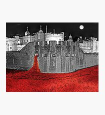 Poppies By Moonlight. Photographic Print