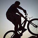 the shadow rider by michael hogarth