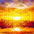 Flower of life by rafo