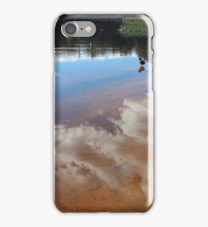 Contemplating Dunn's Swamp iPhone Case/Skin
