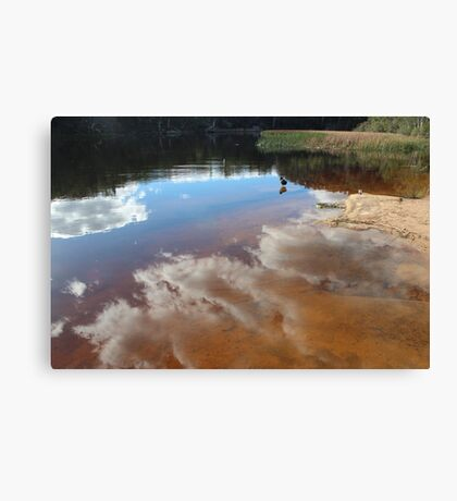 Contemplating Dunn's Swamp Canvas Print