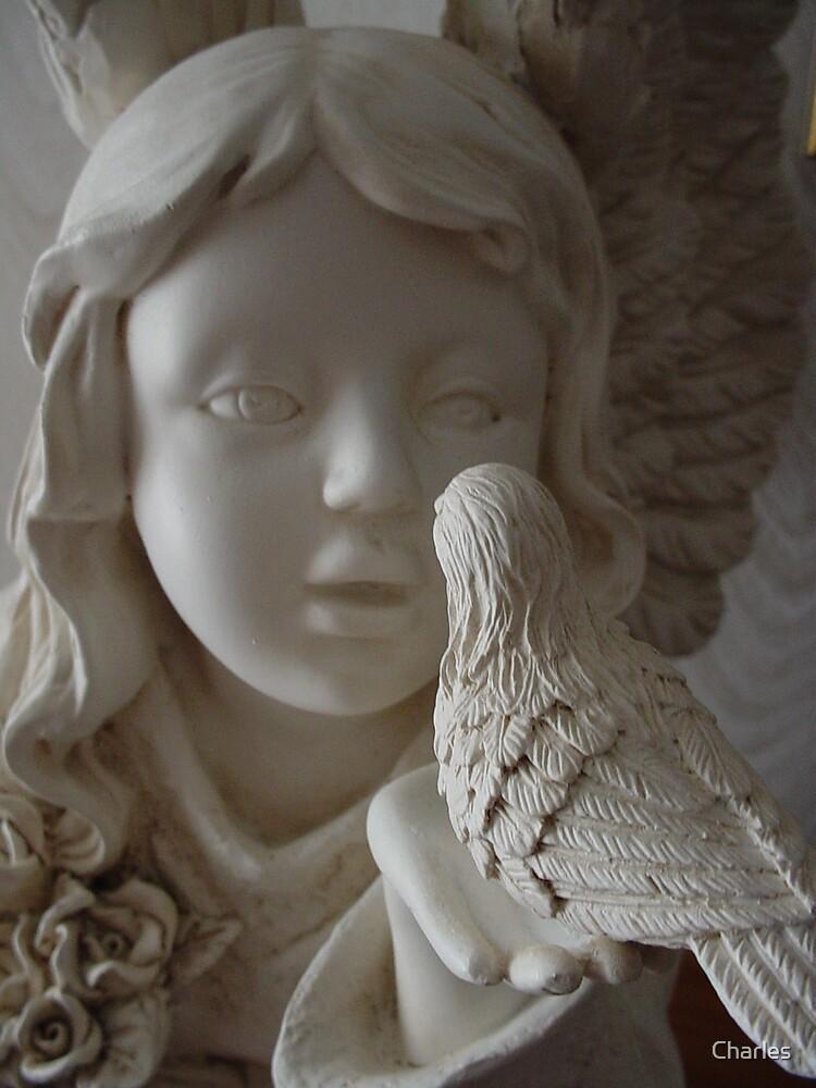 Angel by Charles