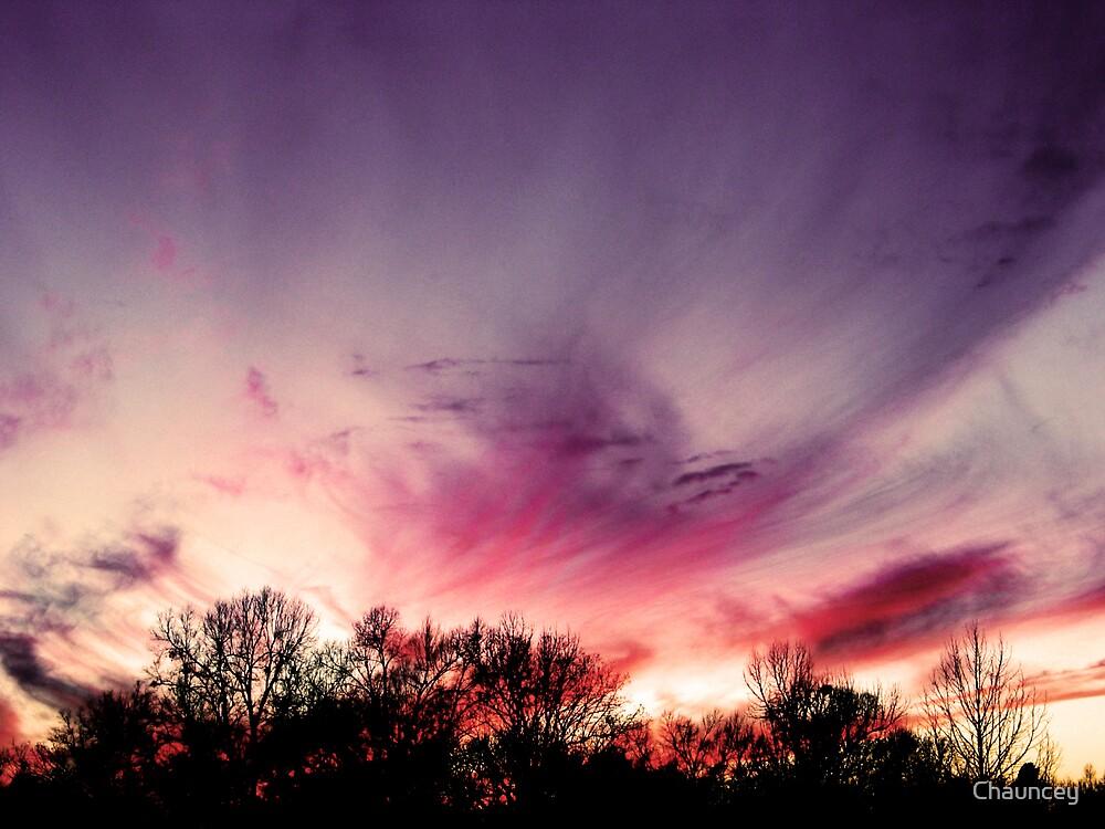 Purple Haze by Chauncey