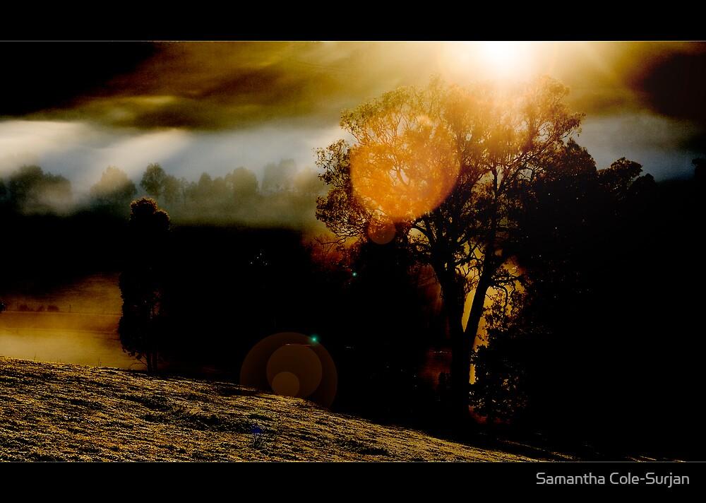Bonnie Doon Serenity by Samantha Cole-Surjan
