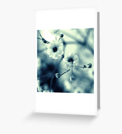 Old Ice Greeting Card