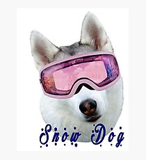 Snow Dog with Goggles Photographic Print