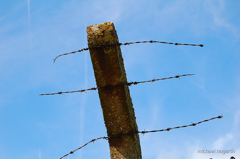 wire sky by michael hogarth