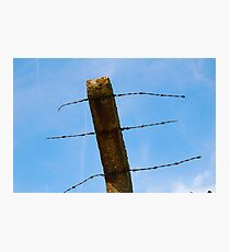 wire sky Photographic Print