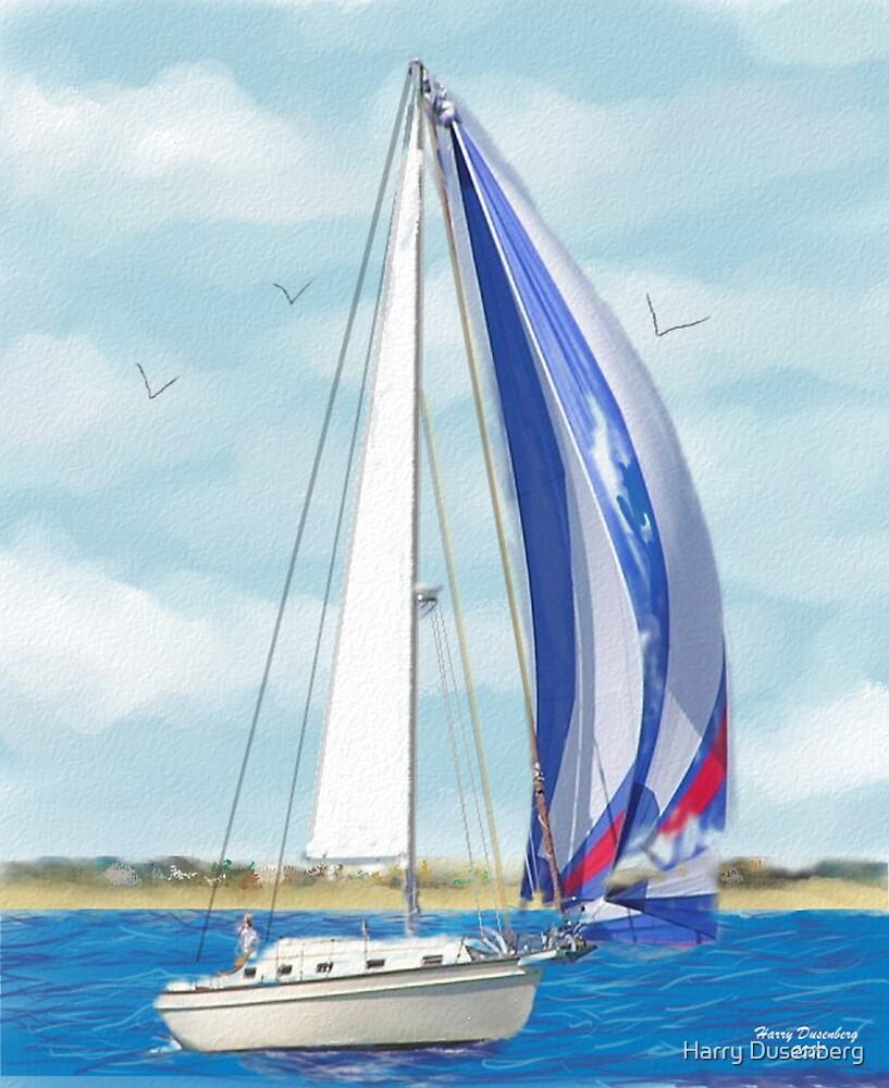 Sailboat 1 by Harry Dusenberg