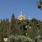 Church in the Trees in Israel by Barberelli
