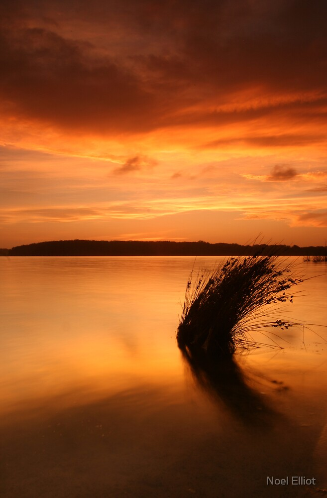 Lake Wollumboola Sunset #1 by Noel Elliot