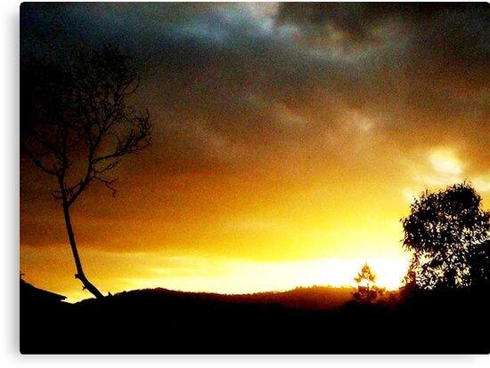 Across The Desert Sky by Melissa Vowell