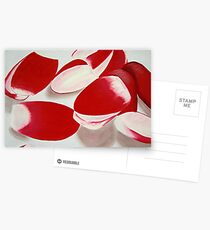 """MODERN"" RADISHES Postcards"