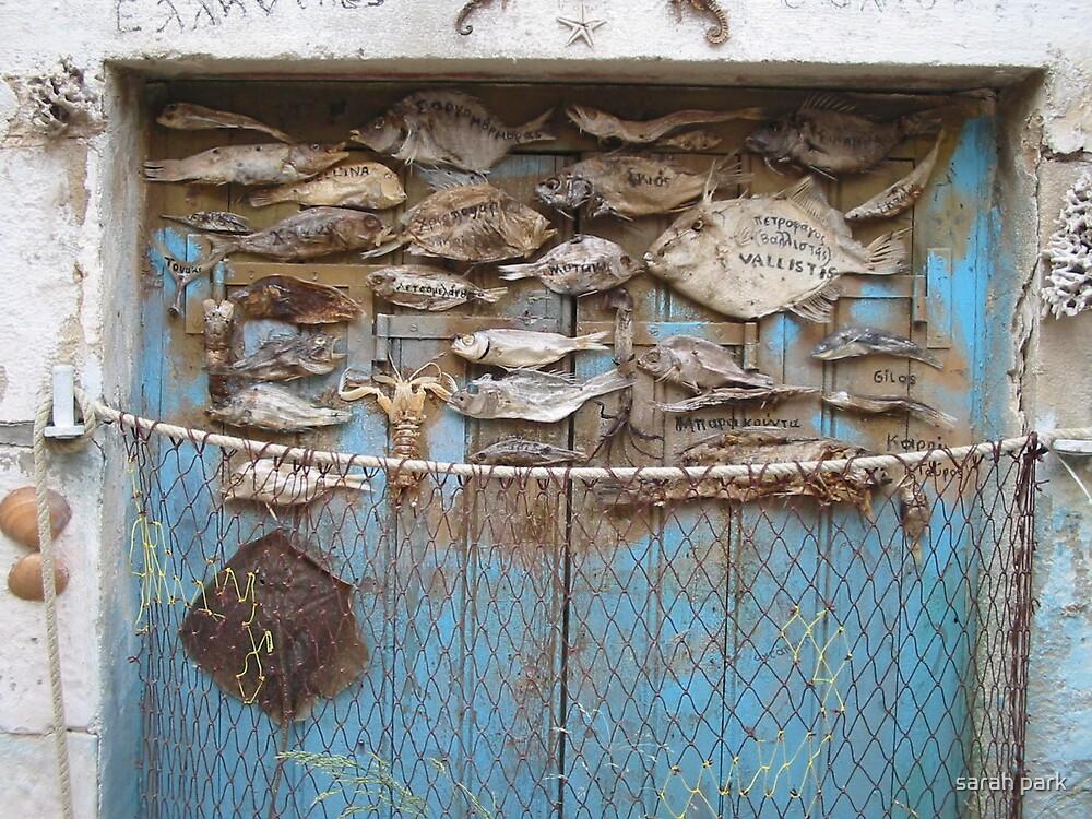 fish door by sarah park