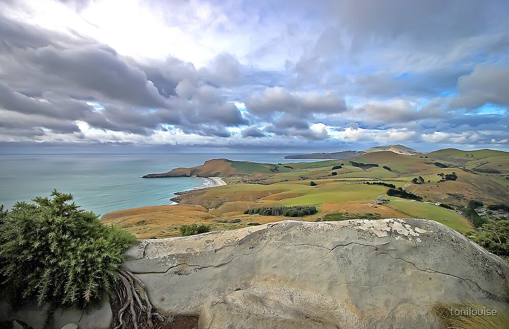 The Top of Nature's Wonders...Otago Peninsula by tonilouise
