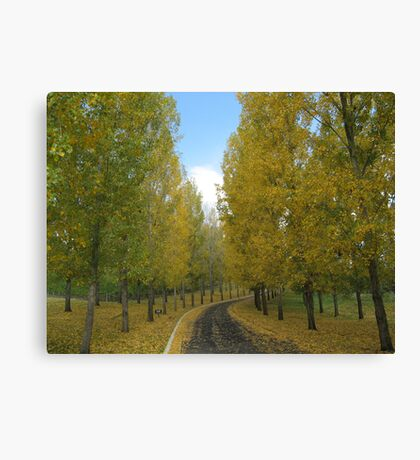 The Yellow Leaf Road Canvas Print