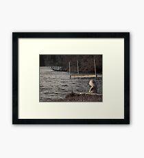 Peaceful Serenity Framed Print
