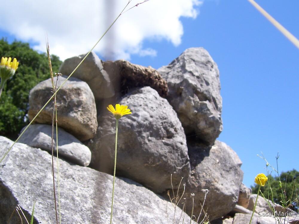 pile of rocks by CaseyMarie