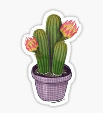 Succulent - Grid Sticker