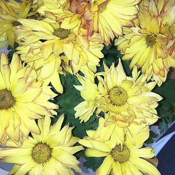 Flash Flowers by WeeknightCrisis