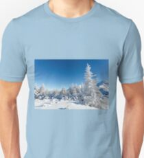 Winter mountain forest landscape, Tatry Mountains T-Shirt