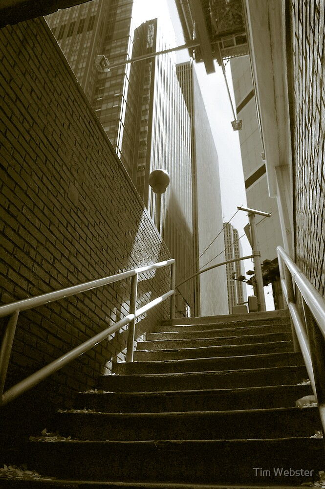 Ascenison by Tim Webster