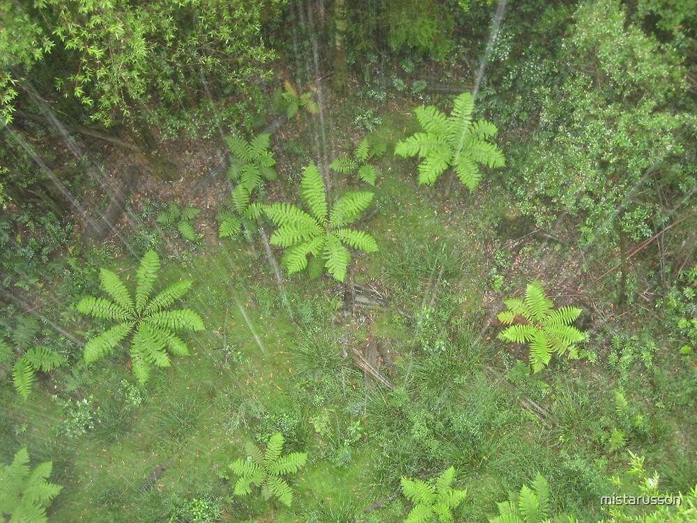 Rainforest 1 by mistarusson